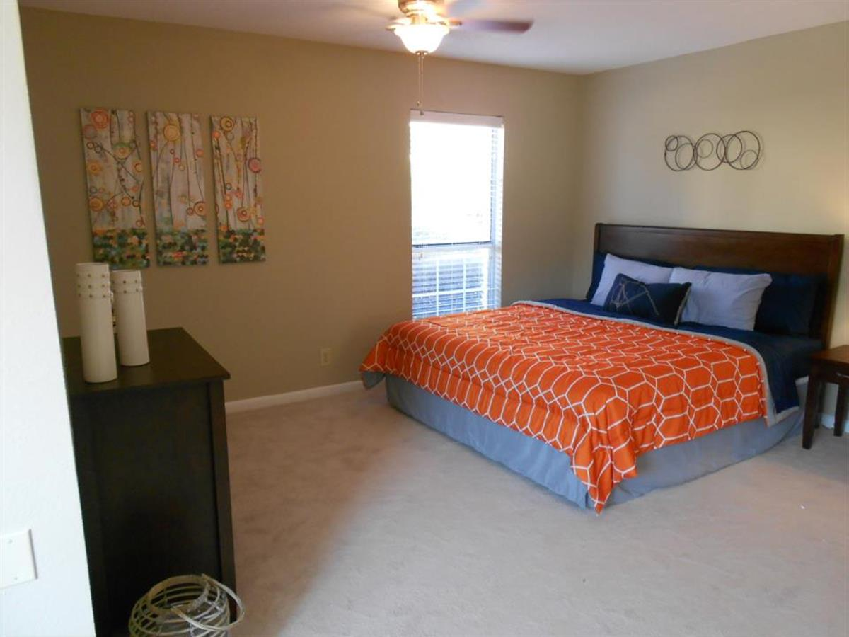One Bedroom Apartments Auburn Al. 2 Bedroom Apts In Auburn Al   Bed Bugs Images Mattress